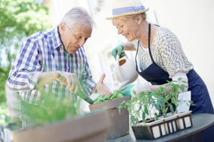 two seniors gardening during senior living community activities