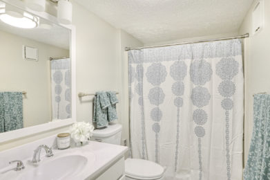 Edgewater Two Bedroom Model Bathroom